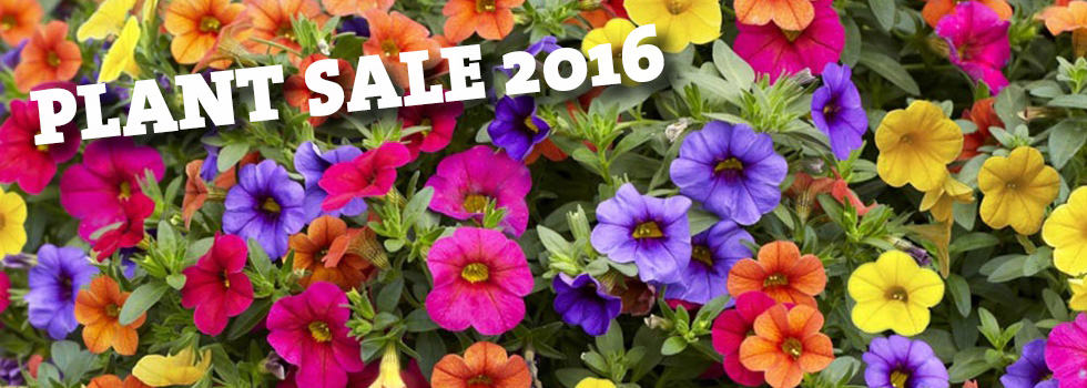 Plant Sale 2016 – Order Collection